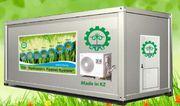 Гидропонное оборудование для выращивания готового корма. Балхаш